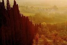 Forlorn Autumn