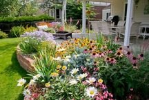 Landscaping Ideas / by Stephanie Lemons