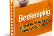 Hobbies - Beekeeping / by Andrew Abranches