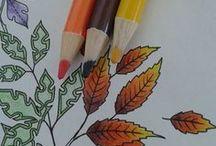 colorir ❤