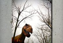 Dino.lândia