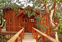 Treehouses & Cabins / by ~Kat~