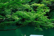 Japonia w walce o przyrodę / .. piękno w pigułce ;)