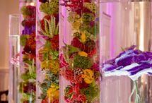 Beautiful Florals / by Lynn Laufenberg