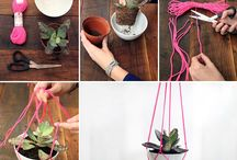 For my plants / by Kristi Peters Hill