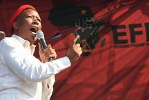 Julius Malema is a political chameleon http://robertmugabetv.blogspot.com