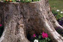 Claire country garden ideas