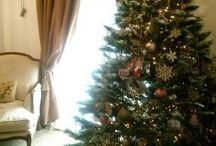 Christmas photo / Christmas time