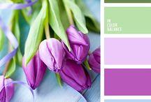 paleta de colores / La naturaleza  nos ayuda a combinar los colores y lucir a la moda
