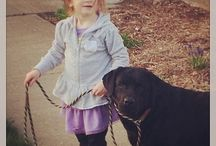 Labs and Littles! / There's nothing more precious than a child and their dog! Our assistant's 2 year old daughter LOVES spending her time with the labs here... and we also love receiving pictures from clients of their own littles with their labs!