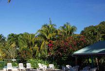 Location vacances Guadeloupe / Des photos de nos location de gîtes et bungalows en Guadeloupe
