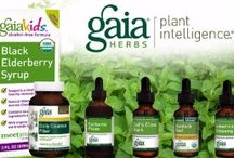 Gaia Herbs offered by Nutritional Institute