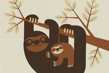 Sloth Shelter