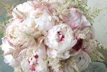 Romantic Astilbe Magic / If your not a fan of Baby's Breath, you will love Astilbe!