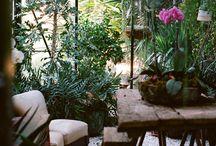 Garden / garden, green, wood, ...
