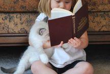 libros,lectura