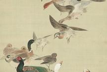 oiseaux de charme