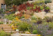 Zahrady ve svahu