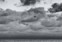 zwart/wit fotografie