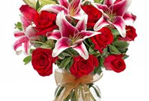 Flowerama Columbus / Flowerama Columbus Ohio has been a client of Flyline Search Marketing since July 2014. They offer beautiful fresh flowers, green and flowering plants and gifts.