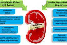 Kidney / Failure