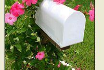 Mailbox landscape / by Kristi Lanford