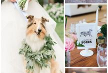 Animals at Weddings