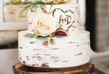 Cakes / Engagement and Wedding cake ideas
