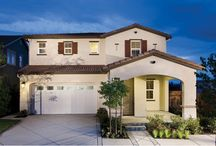 Montalcino by Standard Pacific Homes