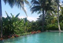 Bali, 2015 / My trip to Balo