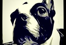 Puppy love / by Bumbleberry (Meg Vitale)