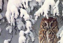 Art - Winter / by Troll Seller