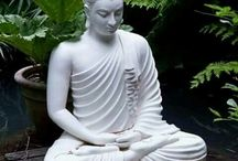 Buddha beelden