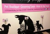 groom salon ideas