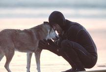 Dog Human Relations