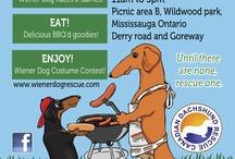 Wiener-Paw-Looza! September 22 2012