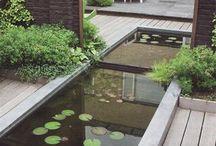 Jardín Mini estanques