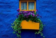 windows! / by Anna Marie
