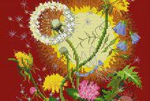 Kvety poľné