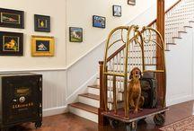 Pet Friendly Hotel / Lord Camden Inn is one of Camden's most Pet Friendly Hotels.