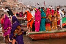 Varanasi India / by Dorothy Pitt
