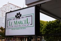 Things To Do at Le Marcel / Meetup group? Birthday party? Training class graduation? The reasons to visit Le Marcel are limitless when you have such an awesome, all-about-dogs space and tons of yummy goodness!