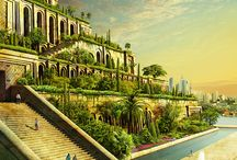 My Favorite Game  |  Gardens of Time / by Kristine Braaten Fairbanks