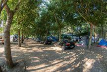 greek camping
