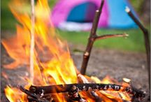 DIY Camping Tips and Tricks / by Freda Williams Lough