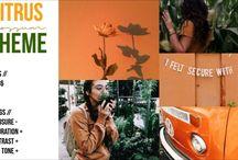 Fotos Tonos Naranjas