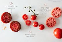 Tomato Week! / We're celebrating all things Tomato over at Food52!