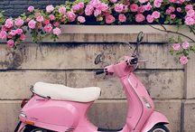 mundo cor rosa