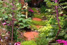 Create: Fairy Gardens