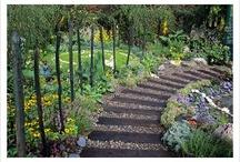Outdoor Spaces // Drought Tolerant, Xeriscape & Native Texas Plants / Drought tolerant/native Texas plants and xeriscape designs & landscapes / by Kristen Burnett
